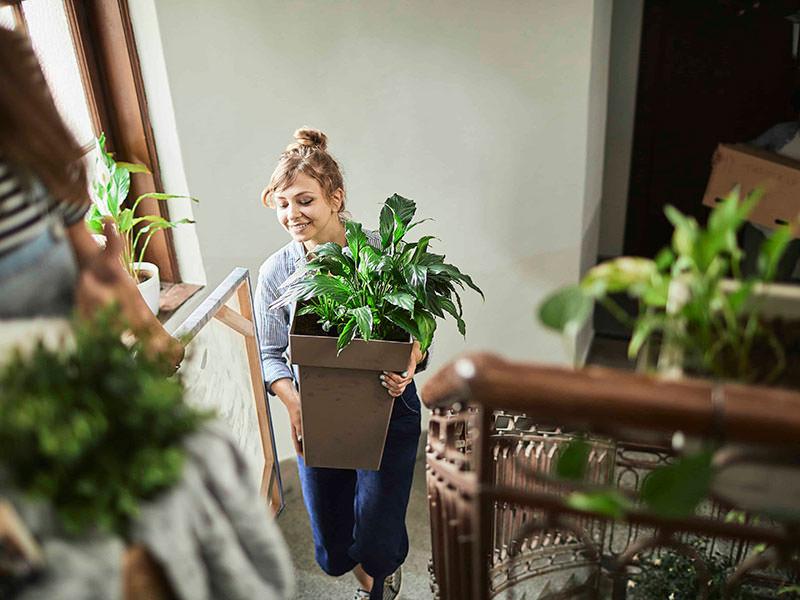 خانمی در حال حمل گلدان در راه پله